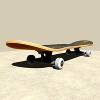 Fully rigged Skateboard