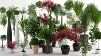 VP Interior Plants Bundle