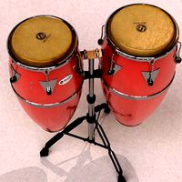 Conga and tumba (percussion)