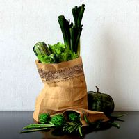 green veggies in packet  render ready vray