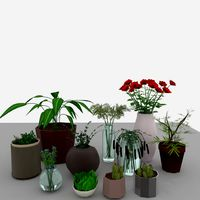 Interior design elements plants set