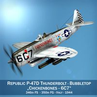 Republic P-47D Thunderbolt - Chickenbones