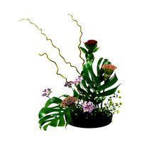 ikebana Japanese art of flower arranging 3d model