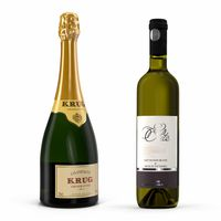 Champagne and Wine Bottles 3D Models Collection