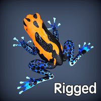 Poison Frog Orange Rigged