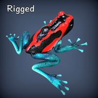 Poison Dyeing1 Frog Rigged