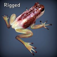 Poison Brick Frog Rigged