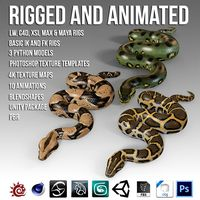 Animated Pythons Vol 1