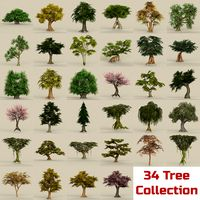 Game Ready Biggest Tree Collection