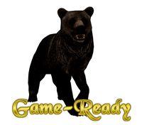 Photorealistic Bear Low Poly Game Ready
