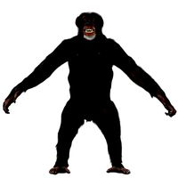 Chimp - Female (Rigged, Fur)