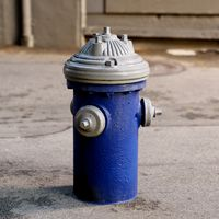 Blue and white fire hydrant