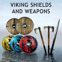 Viking Shields and Weapons