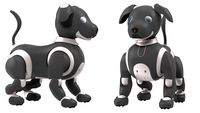 Robot Dog Generic