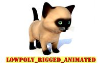 cartoon cat kitten rigg animated