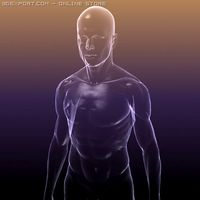 Human body  silhouette of a Male 3D Model